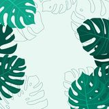 Monstera Leaf pattern background. Vector illustration. Monstera Leaf pattern background for summer banner. Vector illustration Stock Image