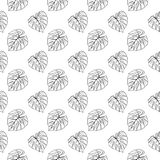 Monstera leaf tropical plant ink line art hand drawn sketch seamless pattern texture background vector Stock Photography