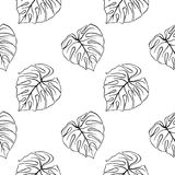 Monstera leaf tropical plant ink line art hand drawn sketch seamless pattern texture background vector Royalty Free Stock Images
