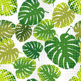 Monstera leaves in halftone style. Seamless background. Summer tropical design. Stock Photos
