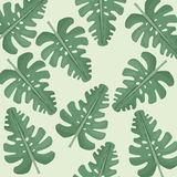 Monstera leaves jungle seamless pattern. Illustration eps 10 Royalty Free Stock Images