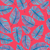 Monstera leaves pattern Royalty Free Stock Photo