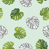 Monstera leaves. Seamless pattern Stock Photography