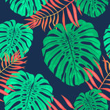 Monstera leaves seamless pattern. Vector tropical botanical illustration. Hand drawn jungle tropical leaf pattern background wallpaper Royalty Free Stock Photography