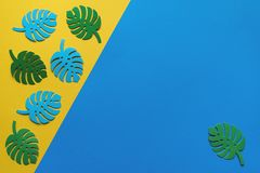 Monstera leaves on a yellow-blue background royalty free stock image