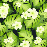 Monstera palm leaves pattern and hibiscus flowers Stock Photo