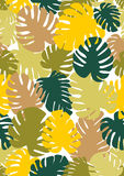 Monstera seamless background. The theme of summer and nature. Tropical, exotic pattern. Different shades of green, pink and brown Stock Images