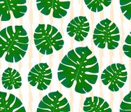 Monstera seamless pattern. Print with leaves. Design of textiles and fabrics. Trendy palm leaves on a abstract background. Illustration vector illustration