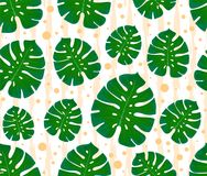 Monstera seamless pattern. Print with leaves. Design of textiles and fabrics. Trendy palm leaves on a abstract background. Tropica. Monstera seamless pattern stock illustration