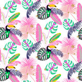 Monstera tropic pink plant leaves and toucan bird seamless pattern. Royalty Free Stock Image