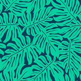 Monstera tropical leaf in a seamless pattern Stock Images