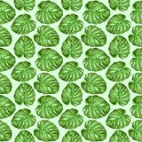 Monstera Tropical Leaves Seamless Textile Patten Vector Design. Monstera Tropical Leaves assembled to compose a seamless perfectly customizable Green and Fresh stock illustration