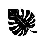 Monstera tropicalplant pictogram Stock Images