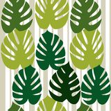 Monstera vector background Royalty Free Stock Photos