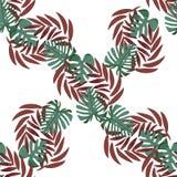 Monstera verde y hojas de palma rojas ilustración del vector