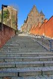 Monstertreppe in Lüttich Lizenzfreie Stockbilder