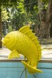 Monstervissen Stock Afbeeldingen