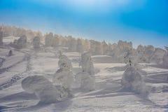 Monstre de neige à la montagne de zao Image libre de droits
