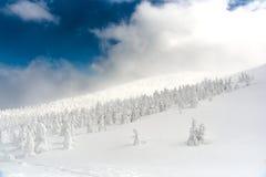 Monstre de neige à la montagne de zao Image stock
