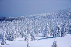 Monstres de neige de Mt Zao dans Yamagata, Japon photos stock