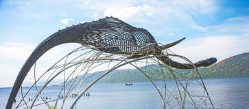 Monstro de Loch Ness? Fotografia de Stock Royalty Free