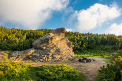 Monstro de pedra nos arbustos Imagens de Stock Royalty Free