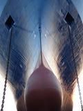 Monstro do oceano que olha fixamente em você Imagem de Stock Royalty Free