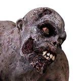 monstro do zombi da ilustração 3D Fotos de Stock Royalty Free