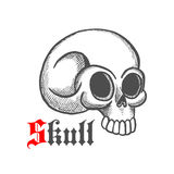 Monstrous human skull sketch symbol. Vintage engraving illustration of monstrous human skull with broken temporal bone. May be use as tattoo, jewelry or t-shirt Stock Image