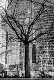 monstruo urbano de los Multi-brazos Fotografía de archivo libre de regalías