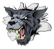Monstruo Wolf Mascot Breakthrough Imagen de archivo