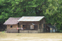 Monsunöversvämning i Myanmar 2015 Fotografering för Bildbyråer