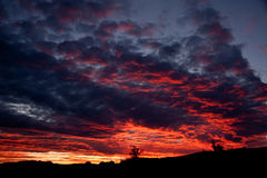 Monsun-Sonnenuntergang in AZ Lizenzfreies Stockfoto