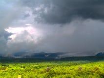 Monsune am Tonto staatlichen Wald Stockbild