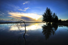 Monsunsoluppgång med reflexion Royaltyfri Foto