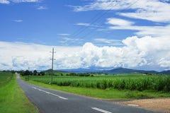 Monsunwolken über Feld des Zuckerrohrs Lizenzfreie Stockfotos