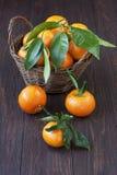 Montão alaranjado dos mandarino na cesta de vime fotografia de stock