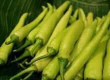 Montão ascendente fechado do capsicum fresco verde-claro na folha da banana foto de stock