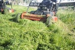 Montão da grama verde novo-segado com cortador de grama Fotos de Stock