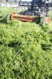 Montão da grama verde novo-segado com cortador de grama Foto de Stock Royalty Free