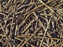 Montão da palha Foto de Stock