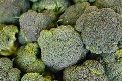 Montão da raiz dos brócolis Brócolis macro Fotos de Stock