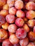 Montão de ameixas cor-de-rosa vermelhas frescas maduras Produto orgânico no mercado do ` s do fazendeiro Alimento limpo saudável Foto de Stock