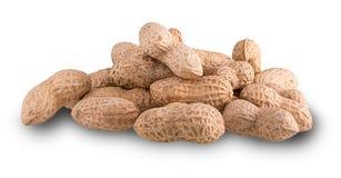 Montão de amendoins secados Fotografia de Stock