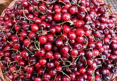 Montão de cerejas vermelhas frescas na cesta imagem de stock