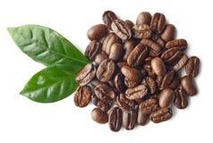 Montão de feijões e das folhas roasted de café imagem de stock