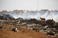 Montão de lixo ardente do fumo de uma pilha ardente do lixo em senegal Imagens de Stock Royalty Free