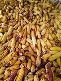 Montão do milho colhido no celeiro foto de stock