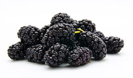 Montão do mulberry em um branco fotos de stock royalty free