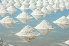 Montão do sal do mar Foto de Stock